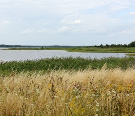 My travel guide to Estonia – Part 2: Pärnu, Saaremaa and Haapsalu